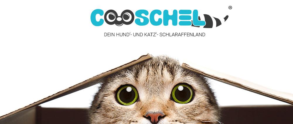 Hundefutter von Cooschel, Tiernahrung von Cooschel