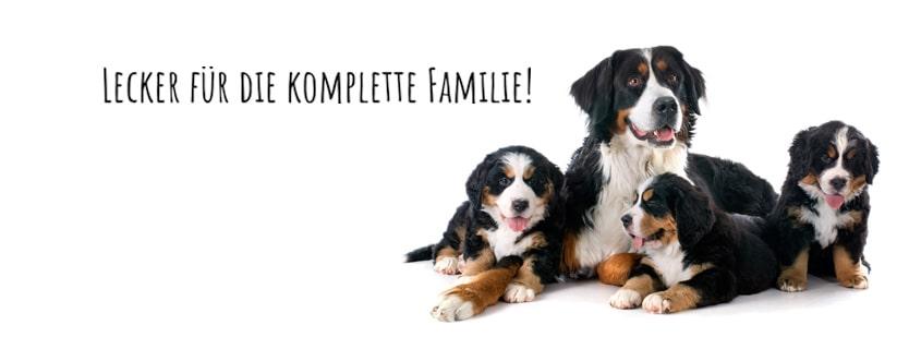 Hundefutter Angus Rind, getreidefrei, für ausgewachsene Hunde