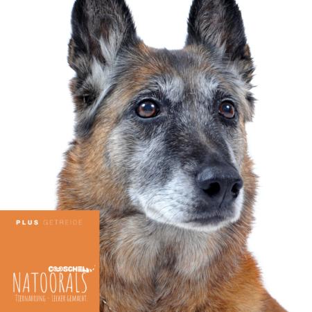 Hundefutter Naturals Truthahn, für ältere Hunde