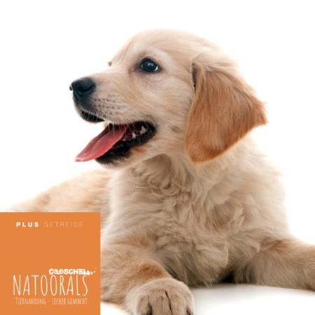 Hundefutter Naturals von Cooschel.