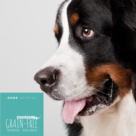 Hundefutter Schwein, getreidefrei, für ausgewachsene Hunde