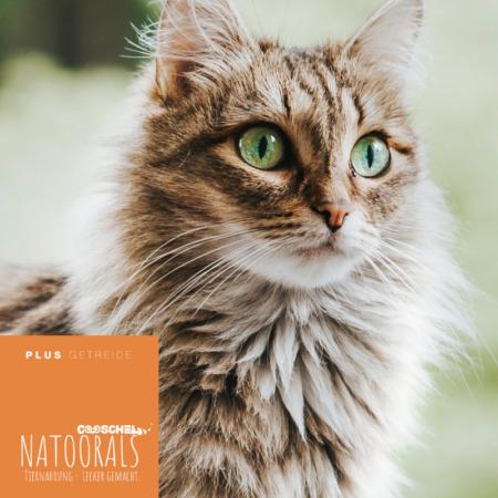 Katzenfutter Naturals Truthahn
